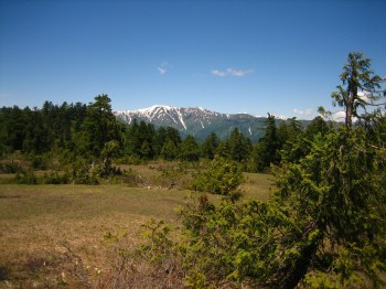 Mountains in oze national park